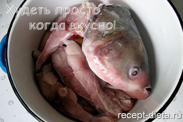 заливное из рыбы